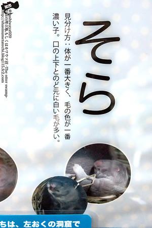 fukushima140727003