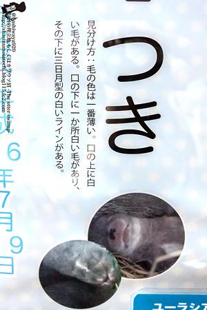 fukushima140727005