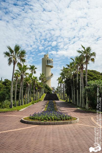 Photos: alohagarden140915002