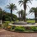 Photos: alohagarden140915003