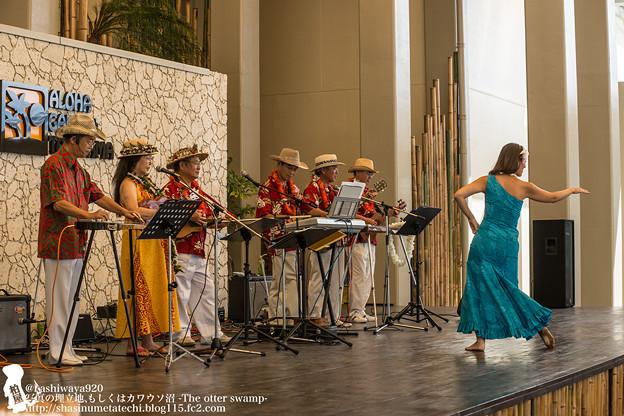 Photos: alohagarden140915004