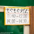 Photos: tokyowildlife140920002
