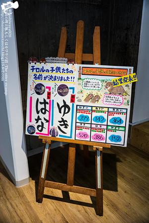 inawashiro160123003