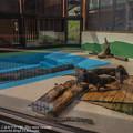 写真: oouchiyama1507120006