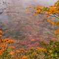 写真: 鬼人谷の紅葉-3