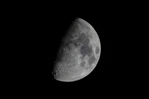 今日の月(月齢8.4日)