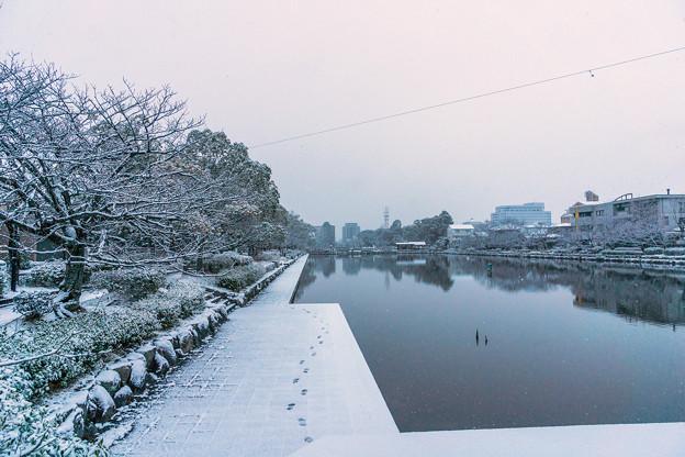 雪の佐賀城堀端-2