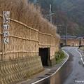 Photos: 大沢風景