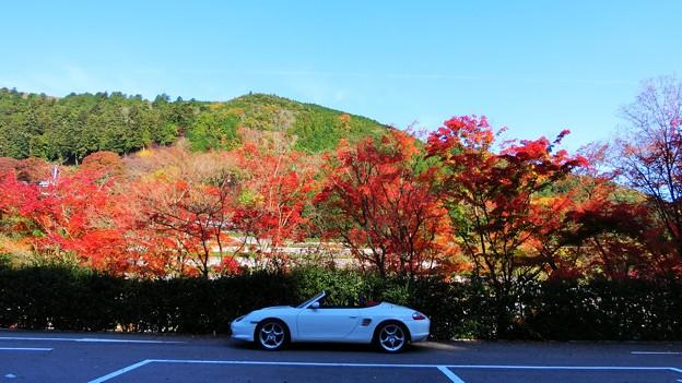 Photos: 勝尾寺の駐車場