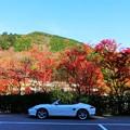 勝尾寺の駐車場