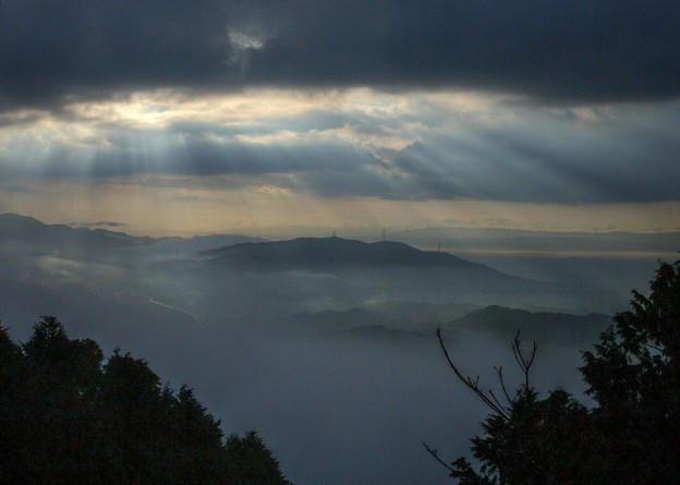 四王寺山からの雲海7