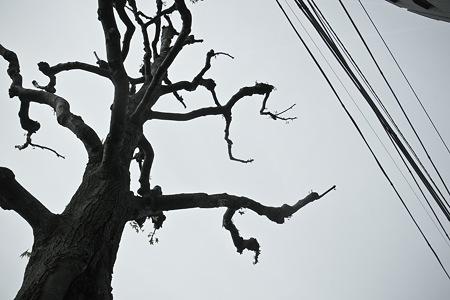2011-05-04の空