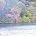 福島も紅葉が始まりました~