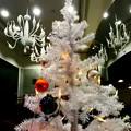 Photos: White Christmas