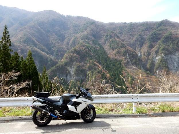 写真: DSCN0517 ヒョー越林道