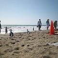 Photos: L.A サンタモニカビーチ