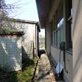 写真: 旧沙弥小中学校の裏