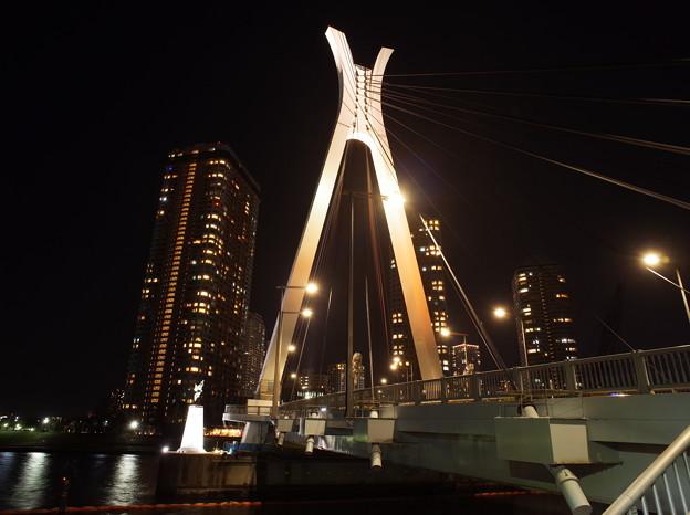 中央大橋(2015.12)