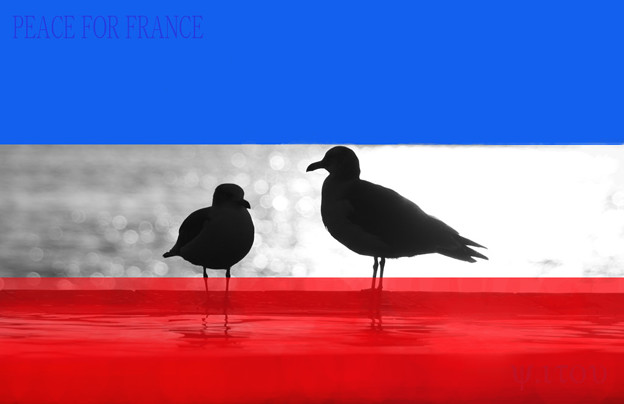 PEACE FOR FRANCE