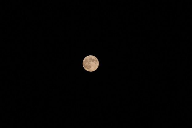 9月9日の満月