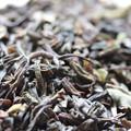 Photos: MARIAGE FRERES DARJEELING PRINCETON 茶葉