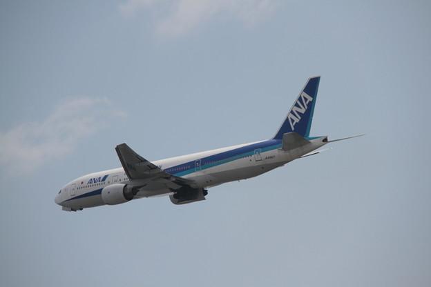 184 5月2日 長崎県 長崎空港 展望デッキ ANA B777 JA8967