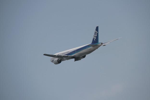 185 5月2日 長崎県 長崎空港 展望デッキ ANA B777 JA8967