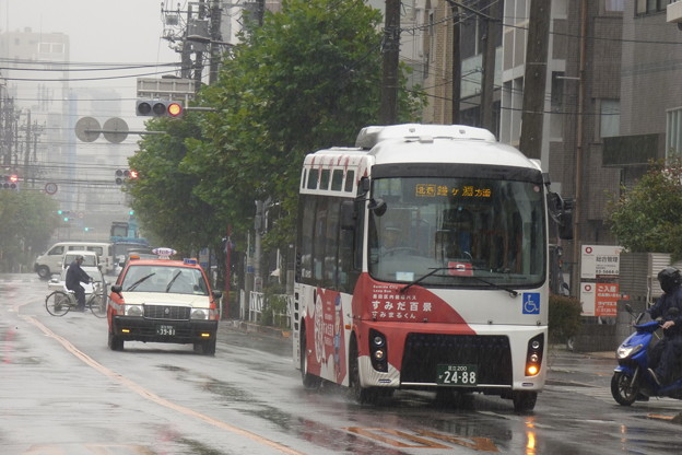 雨の曳舟川通りを走る