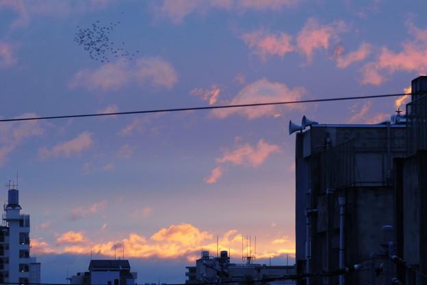 Photos: 夜明けの朝焼けの始めの頃