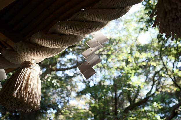 須須神社 紙垂