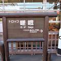 Photos: トロッコ 嵯峨