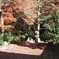 Photos: 東福寺本坊庭園
