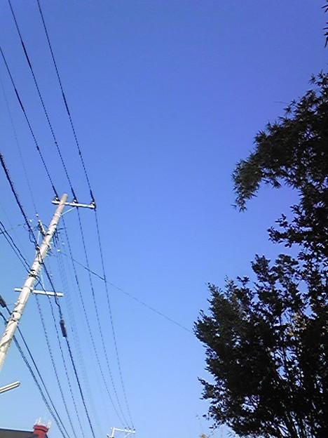 雲ひとつない、青空です。行ってきます( ´ ▽ ` )ノ