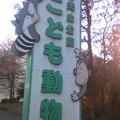 Photos: なかなか充実の動物園でした。また来たい( ´ ▽ ` )ノ