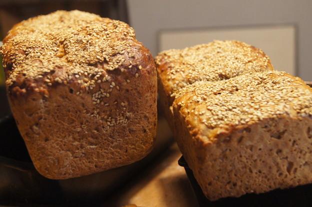 写真: ライ麦サワー種+スペルト麦+ルピナス粗挽きなどが入ったドイツパン
