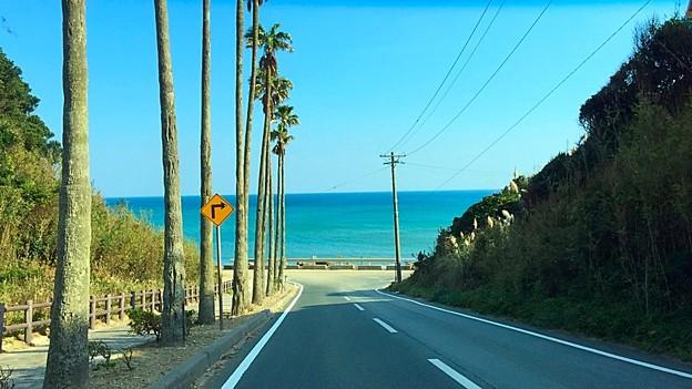 ロングビーチの坂