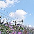 Photos: 秋の沿線4