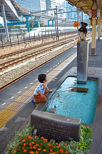Photos: 二人の小僧ちゃん