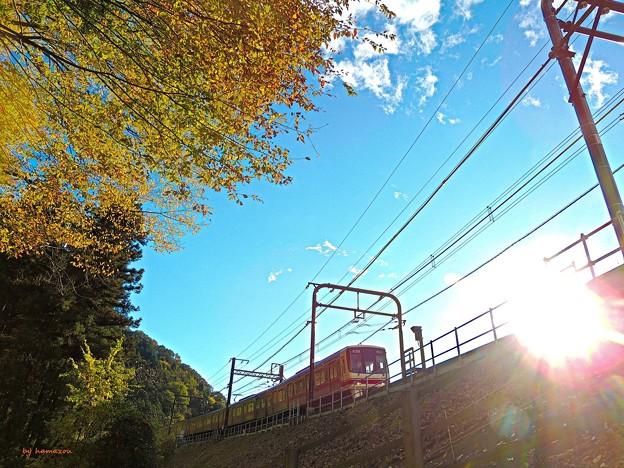 Photos: 秋の沿線12