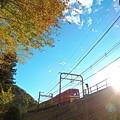 秋の沿線12