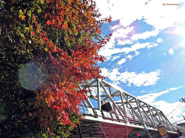 秋の沿線15