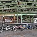 写真: 放置自転車禁止