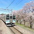 春の中央沿線(4)
