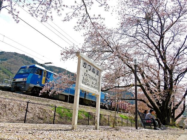 Photos: 桜咲く停車場(3)