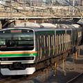 Photos: 湘南新宿ライン@新浦和橋