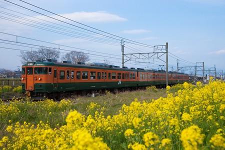 115系@新前橋-井野1
