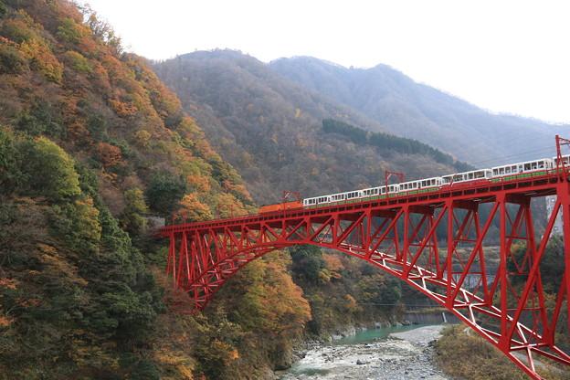 紅葉とトロッコ列車