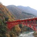 Photos: 紅葉とトロッコ列車