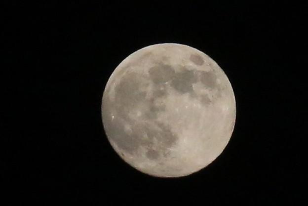 广西柳州市融安??安?拍?的月亮