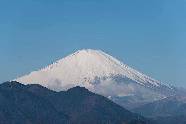 【松田山ハーブガーデンから見た富士山です。】